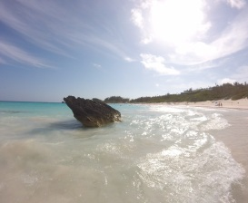 Horseshoe bay beach, Bermuda 2016